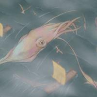 Unlikely Allies: Squid & Whale / 뜻밖의 동맹: 대왕오징어와 고래