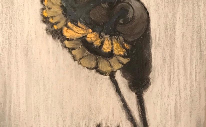 Sunflowers / 해바라기